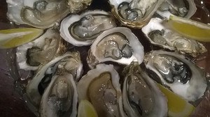 Oyster2_3